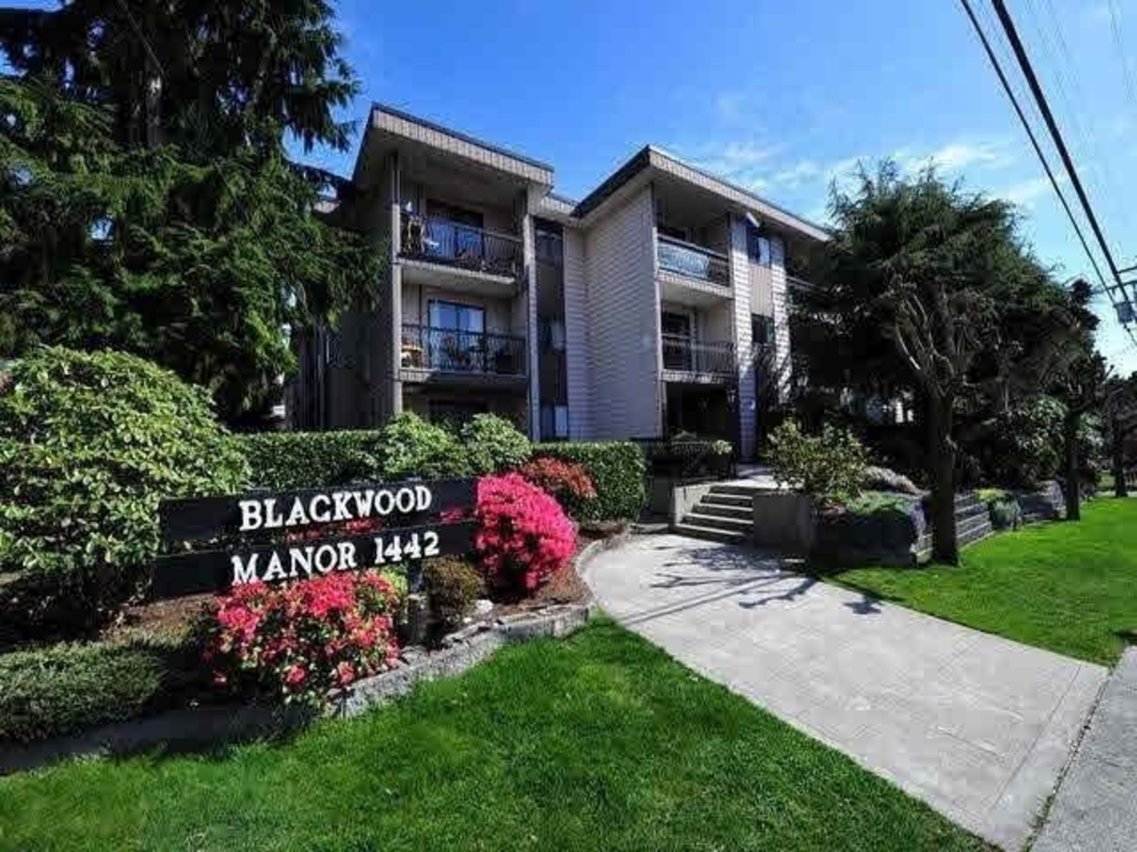 Sold 115 1442 Blackwood Street White Rock On February 2020 View Sold Price Bccondosandhomes