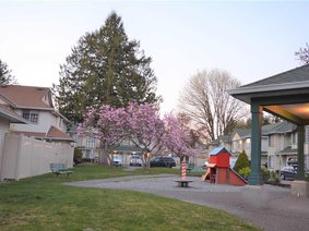 9 21409 Dewdney Trunk Road, Maple Ridge