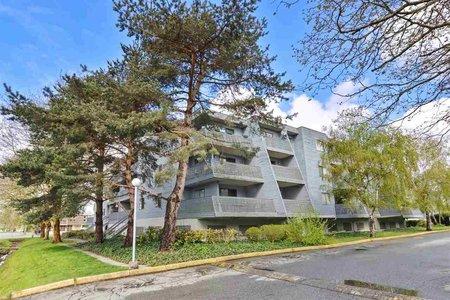 R2175292 - 210 17661 58A AVENUE, Cloverdale BC, Surrey, BC - Apartment Unit
