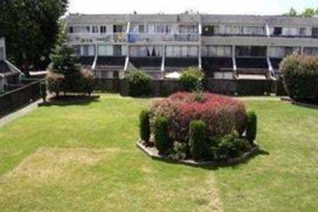 R2206004 - 73 17712 60 AVENUE, Cloverdale BC, Surrey, BC - Apartment Unit
