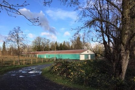 R2226217 - 4393 TOWNLINE ROAD, Bradner, Abbotsford, BC - House with Acreage