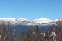 206 4375 W 10TH AVENUE, Vancouver - R2256755