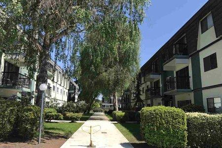 R2265529 - 356 8131 RYAN ROAD, South Arm, Richmond, BC - Apartment Unit