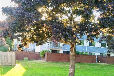 R2291556 - 203 7240 LINDSAY ROAD, Granville, Richmond, BC - Apartment Unit