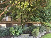 Photo of 503 756 GREAT NORTHERN WAY, Vancouver