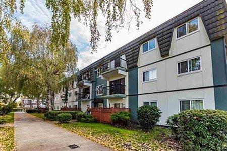 R2387642 - 202 8011 RYAN ROAD, South Arm, Richmond, BC - Apartment Unit