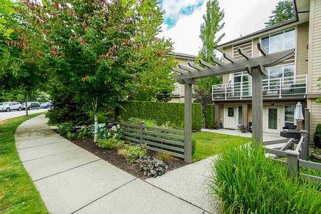 R2409897 - 12 15405 31 AVENUE, Grandview Surrey, Surrey, BC - Townhouse