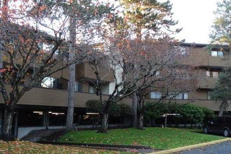R2420585 - 232 7295 MOFFATT ROAD, Brighouse South, Richmond, BC - Apartment Unit