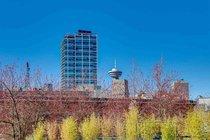 303 22 E CORDOVA STREET, Vancouver - R2445391