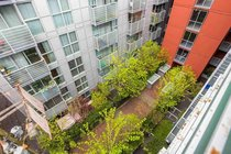 817 168 POWELL STREET, Vancouver - R2453947