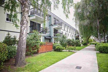 R2469303 - 259 8151 RYAN ROAD, South Arm, Richmond, BC - Apartment Unit