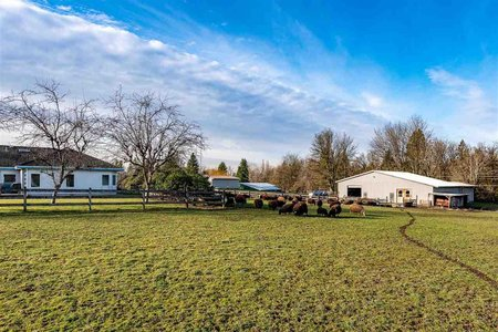 R2485603 - 6754 256 STREET, County Line Glen Valley, Langley, BC - House with Acreage