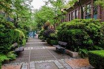 311 22 E CORDOVA STREET, Vancouver - R2497372