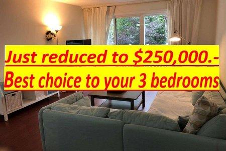R2513353 - 215 7240 LINDSAY ROAD, Granville, Richmond, BC - Apartment Unit