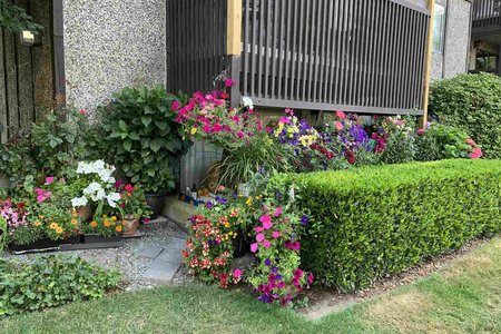 R2574411 - 113 13501 96 AVENUE, Queen Mary Park Surrey, Surrey, BC - Apartment Unit