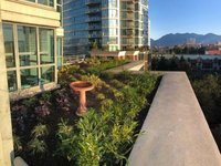 Photo of 702 1128 QUEBEC STREET, Vancouver