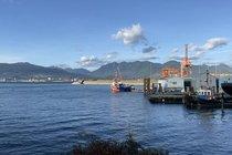 501 168 POWELL STREET, Vancouver - R2591378