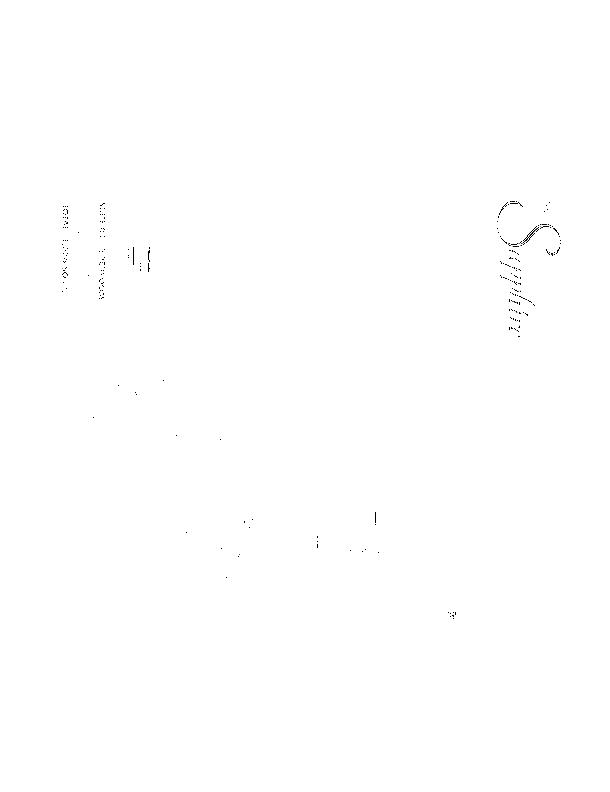 shaphire condos floor plans (PDF) (3)