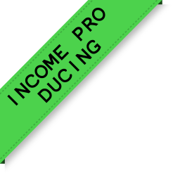 Income pro