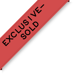 exclusive-