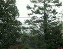F2923837 - 13185 14TH AV, Surrey, , CANADA