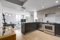 1110 - 445 W 2nd AvenueVancouver