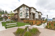 21 - 10480 248 StreetMaple Ridge