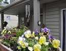 V890158 - 3 - 815 Tobruck Ave, North Vancouver, BC, CANADA