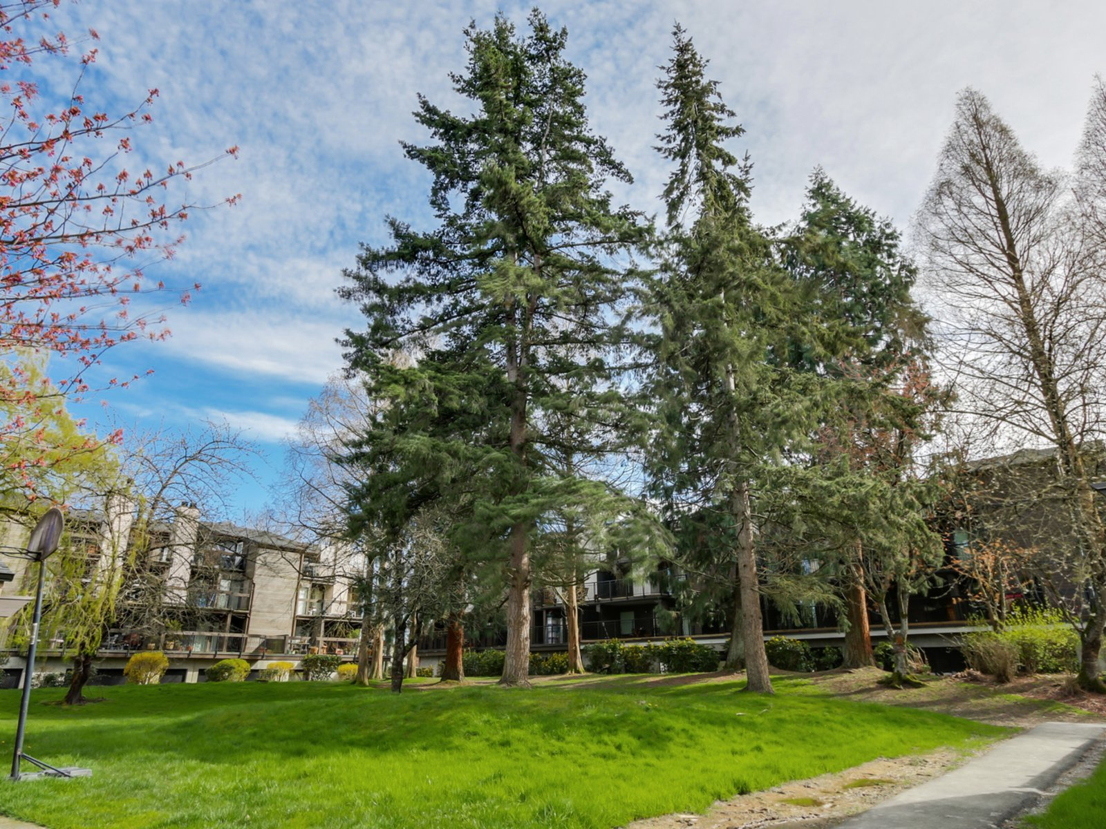 Beacon Cove - 3851 Blundell Road